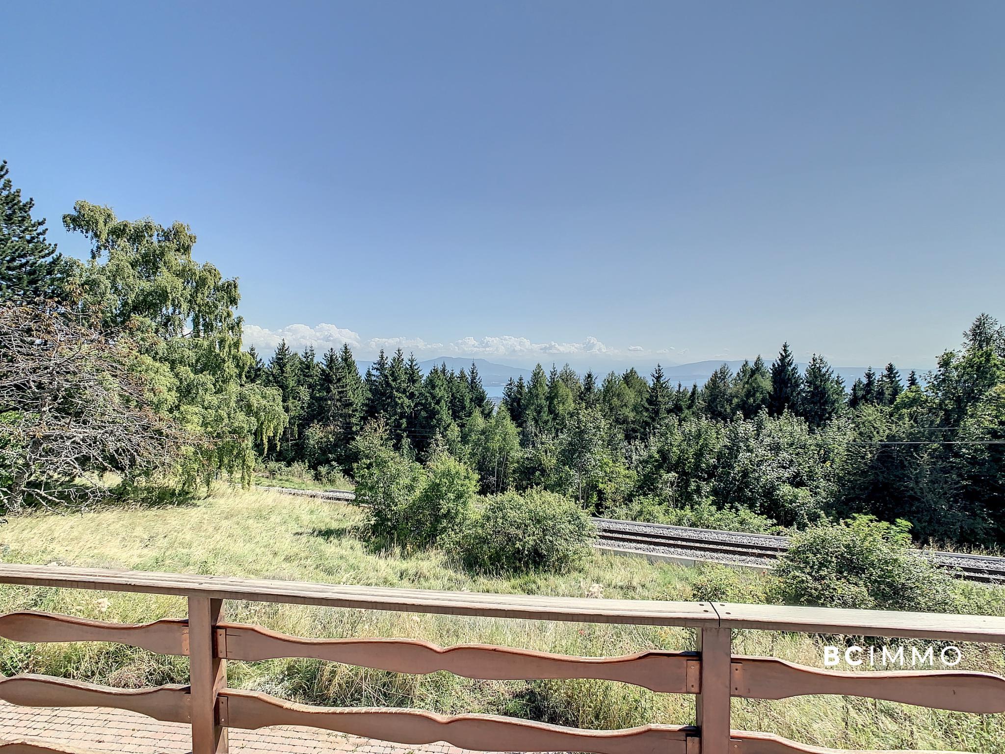 BC Immo - Magnifique chalet avec vue sublime sur le lac Léman - C-21-001