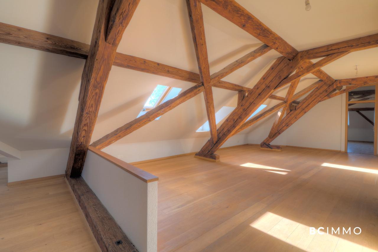BC Immo - Votre appartement ou bureaux dans les combles d'un Château  - A-18-007-GS