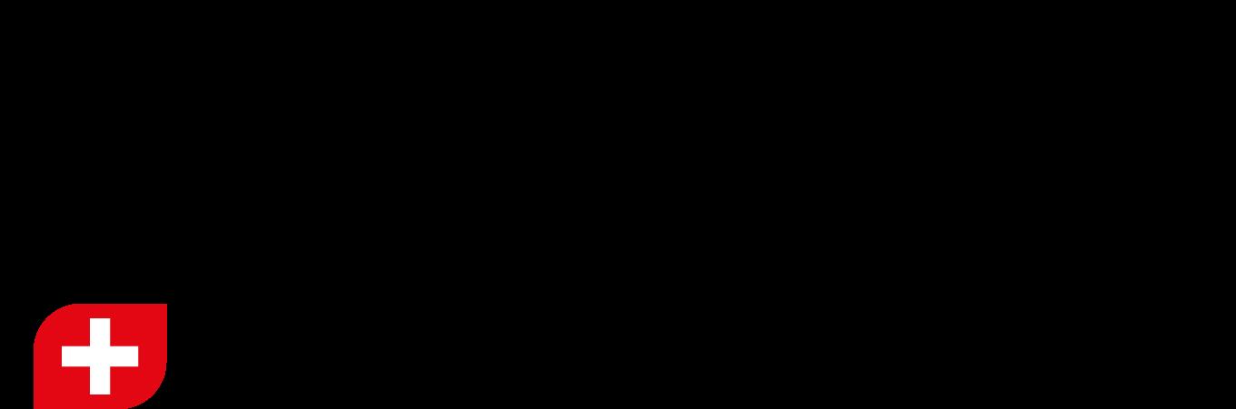 logo ACIGe